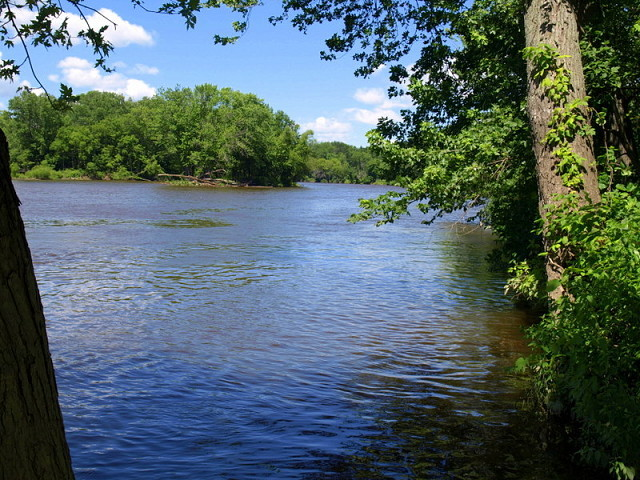 The Thornapple River at Chief Hazy Cloud Park | ionnature