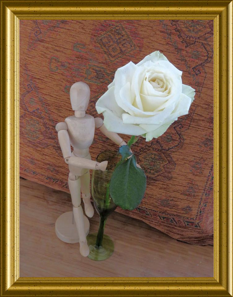 A Rose Rosemarie55 Blipfoto