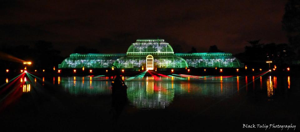 Kew Gardens By Night Backblip Blacktulip Blipfoto