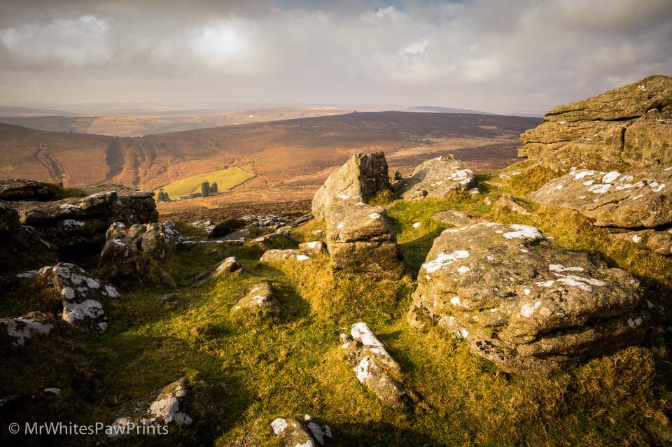 Beautiful Dartmoor Gilesey Blipfoto