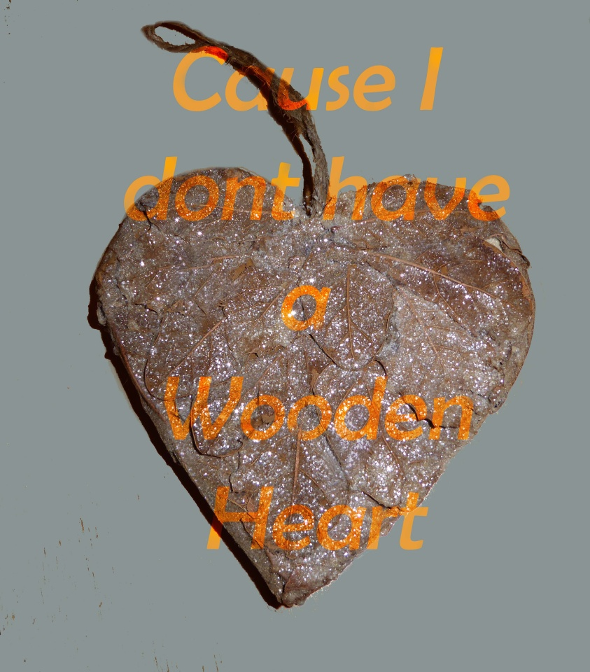 Cause I Dont Have A Wooden Heart Artyfartyannie Blipfoto