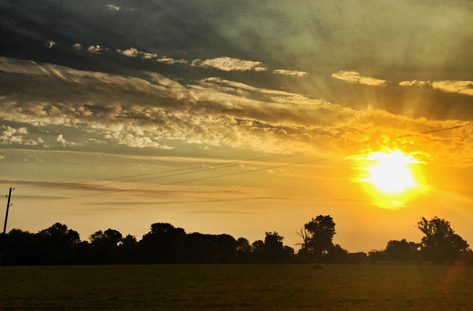 Good Morning Indian Summer Backofthegarden Blipfoto